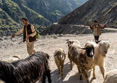 Shepherds-Spiti-Valley