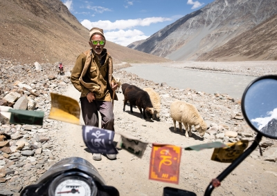 MEETING WITH INDIAN SHEPHERD ON THE ROAD