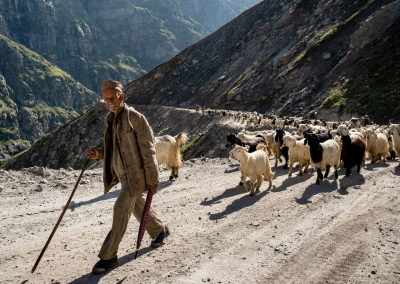 shepherd-spiti-valley-india