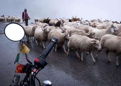 trafic-jam-rhotang-pass