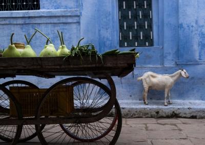 Street - Varanasi