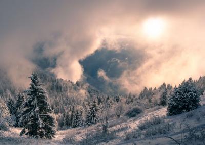 brouillard-le-môle