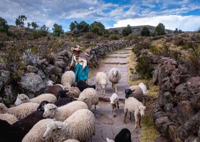rural-life-titicaca-llachon