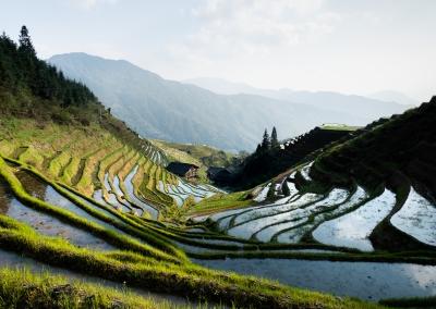 Pingan rice terraces - Longji