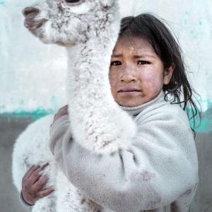 quechua-girl-with-an-alpaca