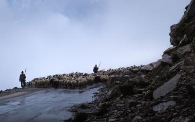Ladakh on Royal Enfield – India