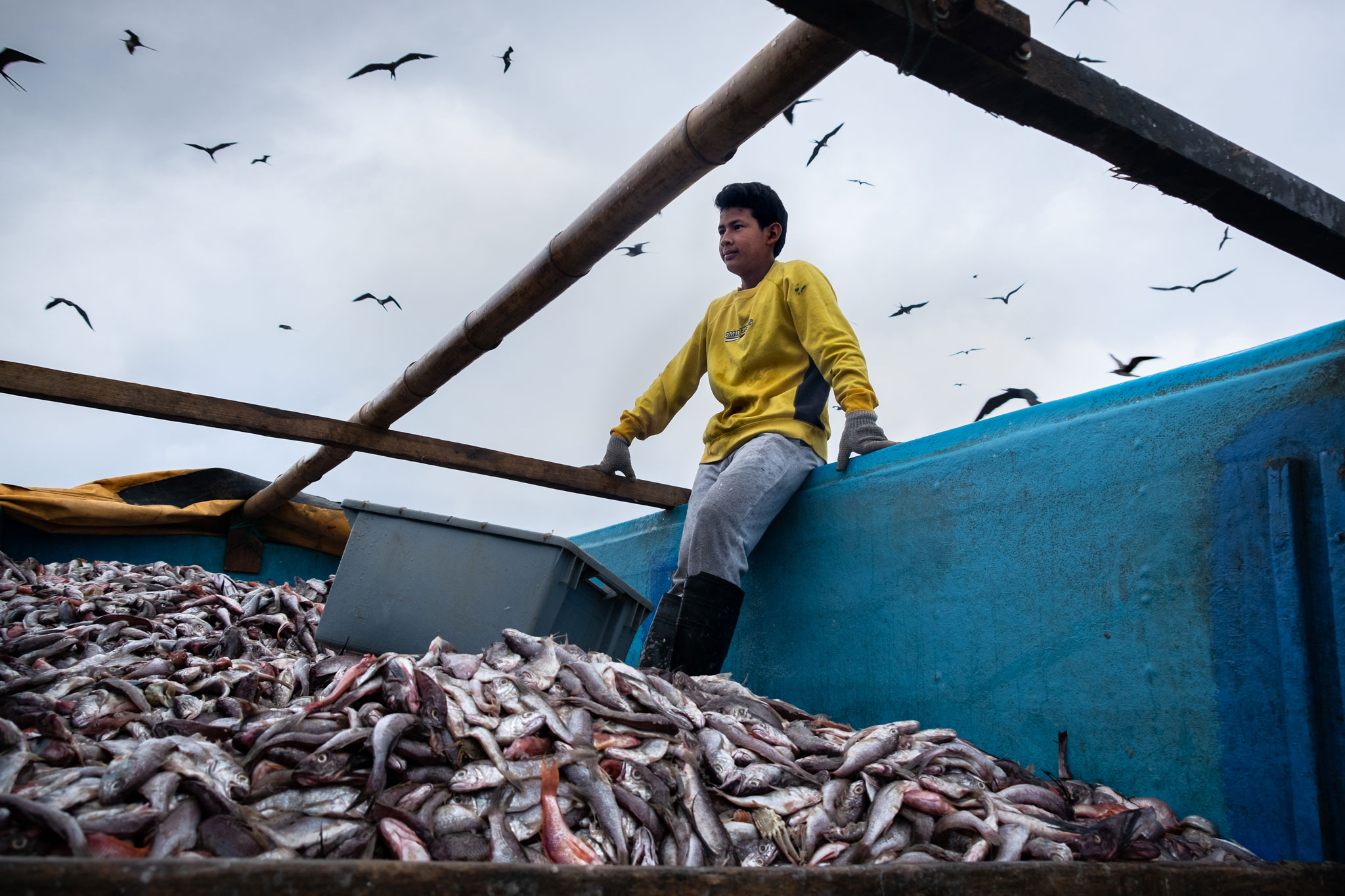 ECUADORIAN FISHERMAN KEEPING THE FISH SAFE FROM THE BIRDS