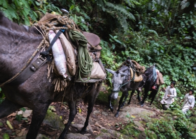 kogi-people-with-horses-sierra-nevada-de-santa-marta