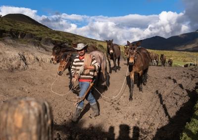 parque-de-los-nevados-vaquero-con-caballos