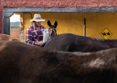 vaquero-colombiano-en-la-finca