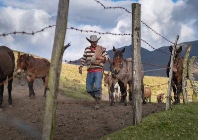 vaquero-con-caballos-parque-de-los-nevados