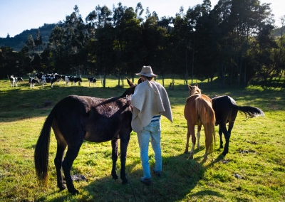 vaquero-en-una-finca-colombia