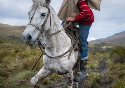 vaquero-parque-de-los-nevados-horse-riding