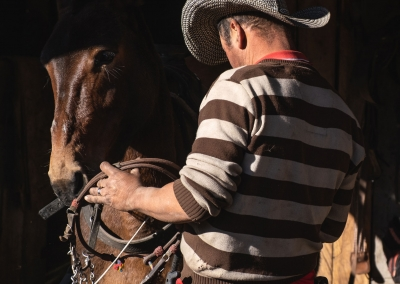 vaquero-y-su-caballo-parque-de-los-nevados