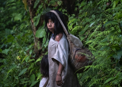KOGI GIRL IN THE SIERRA NEVADA DE SANTA MARTA