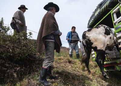 cowboys-del-cocuy-colombia