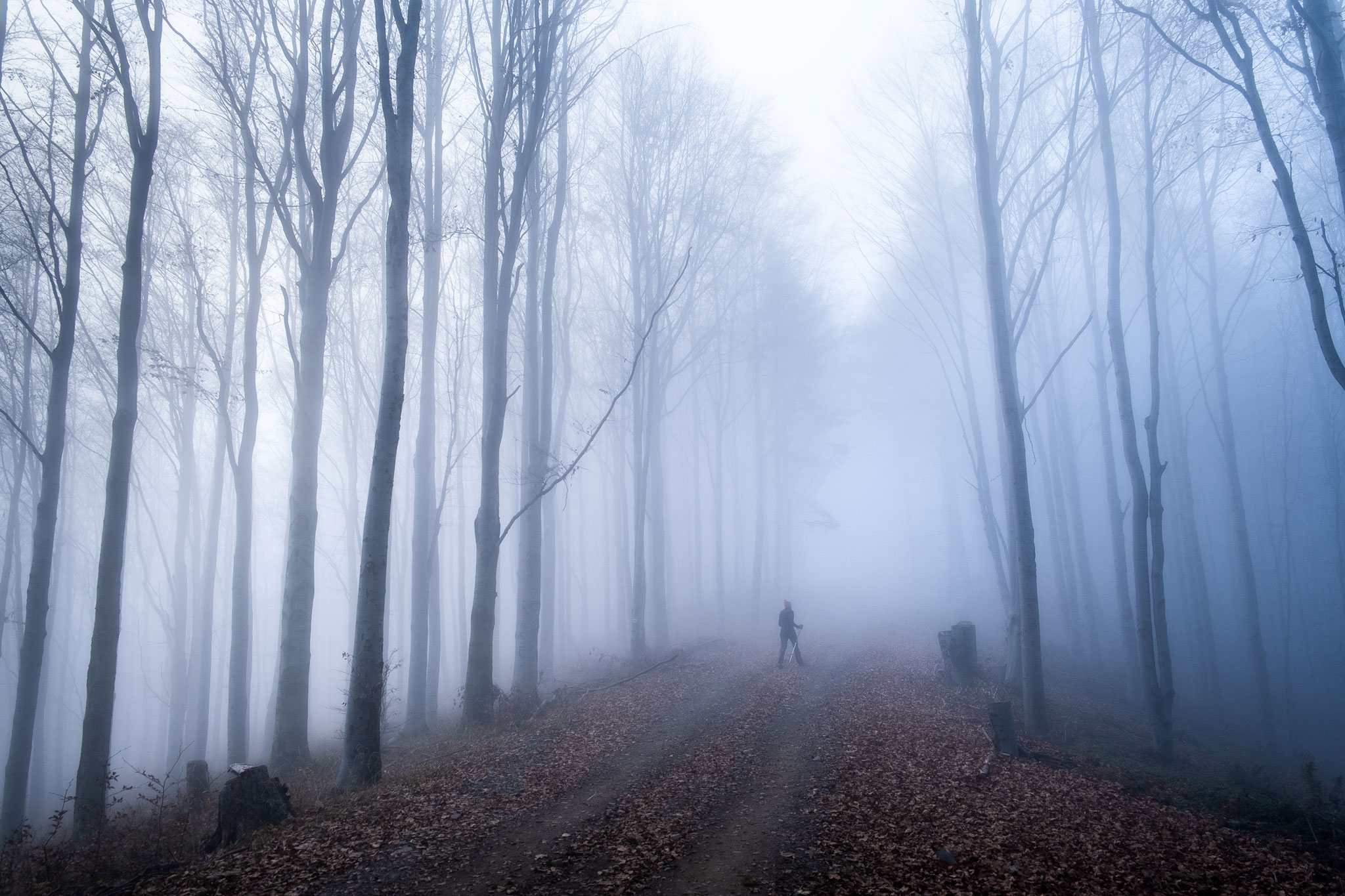 FOGGY-HIKE-POLAND
