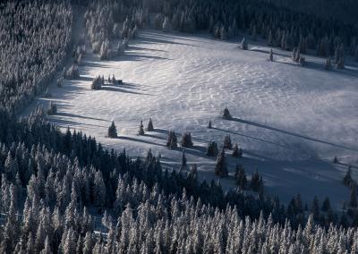 polish-winter-landscape
