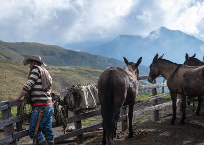 vaquero-finca-la-playa-parque-de-los-nevados-colombia