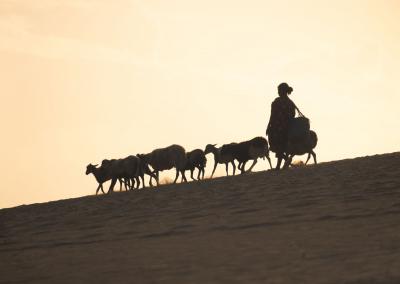 wayuu-shepherd-desert-guajira-colombia