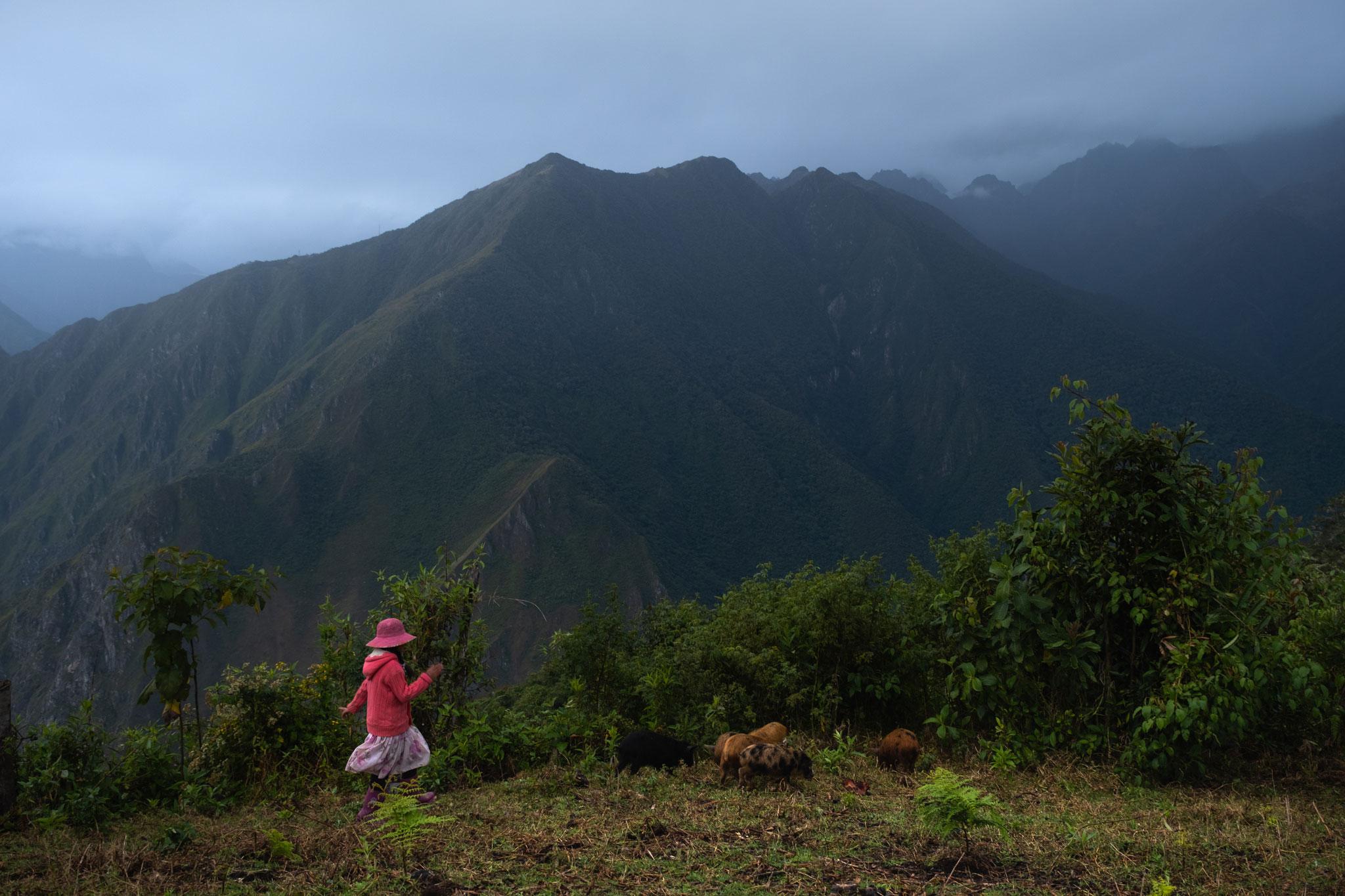 quechua-girl-playing-llaqtapata-peru