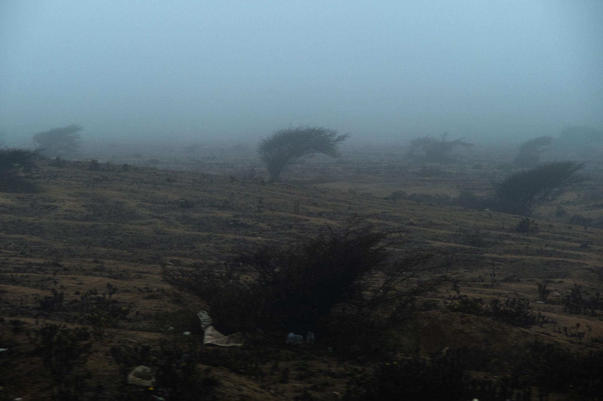 dead-landscape-panamericana-peru
